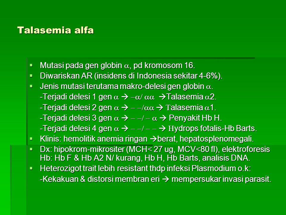 Talasemia alfa  Mutasi pada gen globin , pd kromosom 16.