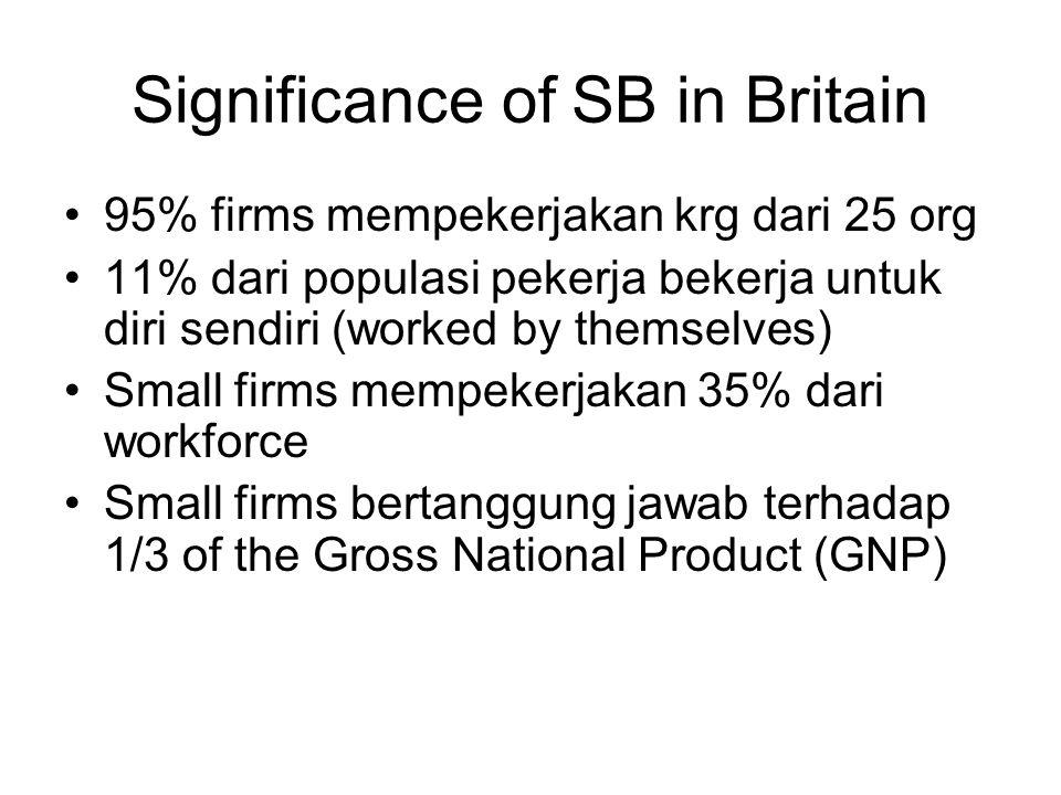 Significance of SB in Britain 95% firms mempekerjakan krg dari 25 org 11% dari populasi pekerja bekerja untuk diri sendiri (worked by themselves) Small firms mempekerjakan 35% dari workforce Small firms bertanggung jawab terhadap 1/3 of the Gross National Product (GNP)