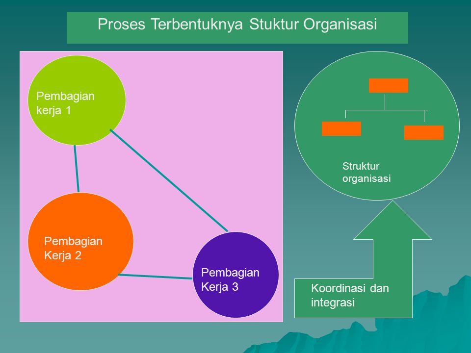 Pembagian kerja 1 Pembagian Kerja 2 Pembagian Kerja 3 Koordinasi dan integrasi Proses Terbentuknya Stuktur Organisasi Struktur organisasi
