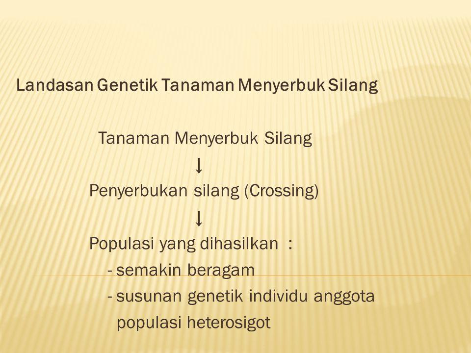 Landasan Genetik Tanaman Menyerbuk Silang Tanaman Menyerbuk Silang ↓ Penyerbukan silang (Crossing) ↓ Populasi yang dihasilkan : - semakin beragam - su