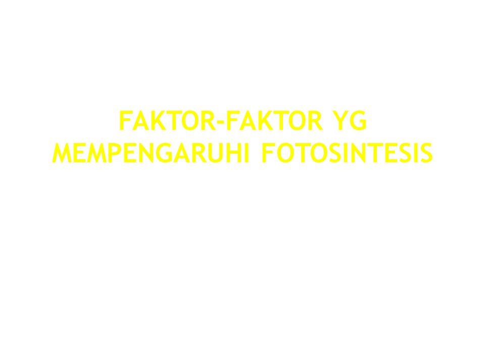 MUHAMMADIYAH UNIVERSITY OF YOGYAKARTA FAKTOR-FAKTOR YG MEMPENGARUHI FOTOSINTESIS 1.