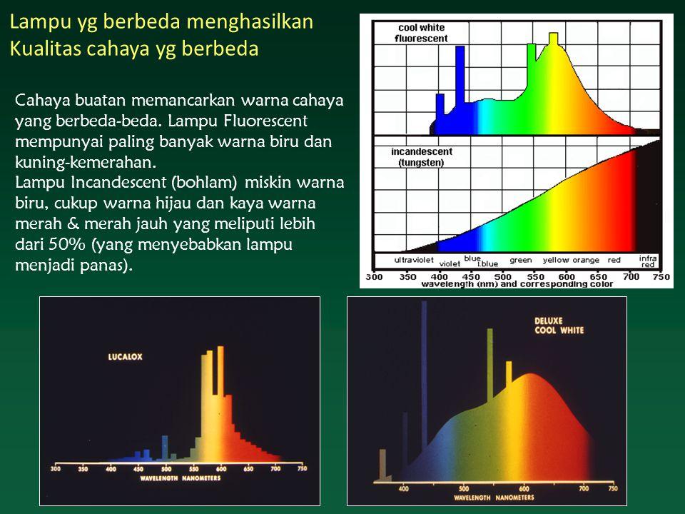 Lampu yg berbeda menghasilkan Kualitas cahaya yg berbeda Cahaya buatan memancarkan warna cahaya yang berbeda-beda.