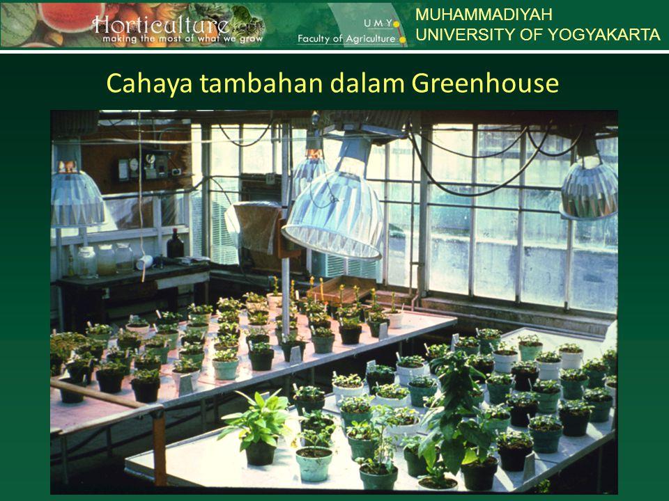 MUHAMMADIYAH UNIVERSITY OF YOGYAKARTA Cahaya tambahan dalam Greenhouse