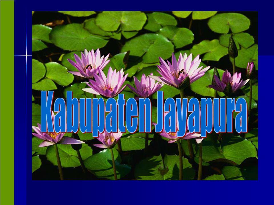 Sekilas Kab Jayapura Luas wilayah 17.516 km 2 terdiri 24 Distrik Luas wilayah 17.516 km 2 terdiri 24 Distrik Jumlah Penduduk 2003: 100.858 jiwa, Kepadatan 6 jiwa/km2.