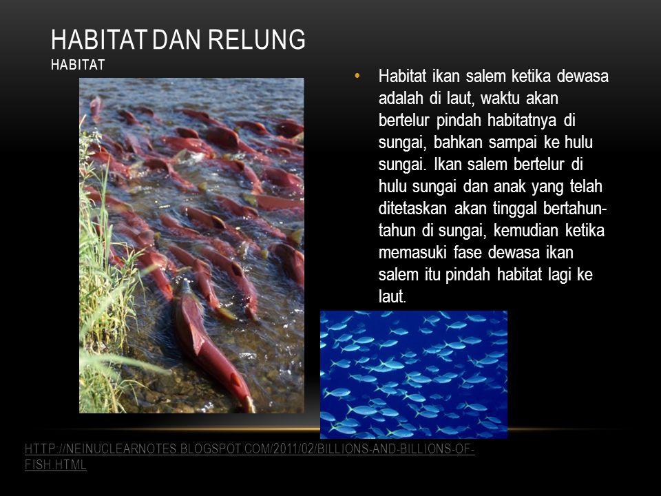 Habitat ikan salem ketika dewasa adalah di laut, waktu akan bertelur pindah habitatnya di sungai, bahkan sampai ke hulu sungai.
