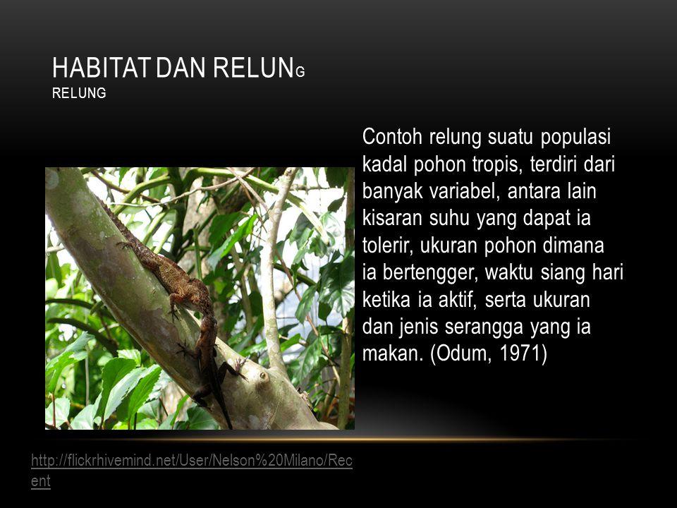 Contoh relung suatu populasi kadal pohon tropis, terdiri dari banyak variabel, antara lain kisaran suhu yang dapat ia tolerir, ukuran pohon dimana ia bertengger, waktu siang hari ketika ia aktif, serta ukuran dan jenis serangga yang ia makan.