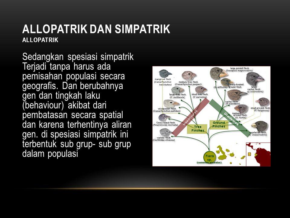 Sedangkan spesiasi simpatrik Terjadi tanpa harus ada pemisahan populasi secara geografis.