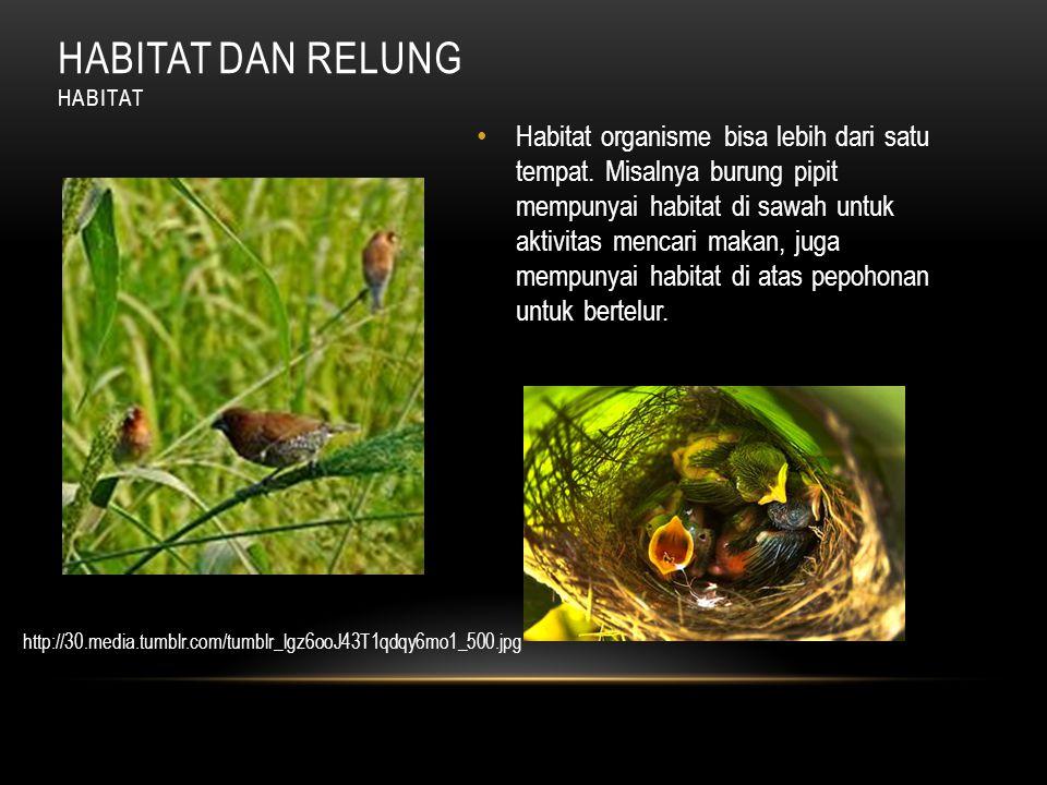 Habitat organisme bisa lebih dari satu tempat.