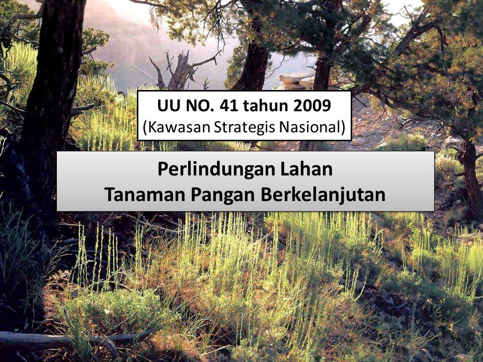 (Kawasan Strategis Nasional) Perlindungan Lahan Tanaman Pangan Berkelanjutan Perlindungan Lahan Tanaman Pangan Berkelanjutan