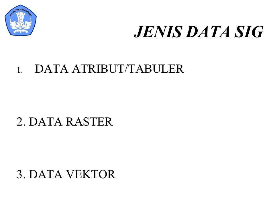 JENIS DATA SIG 1. DATA ATRIBUT/TABULER 2. DATA RASTER 3. DATA VEKTOR
