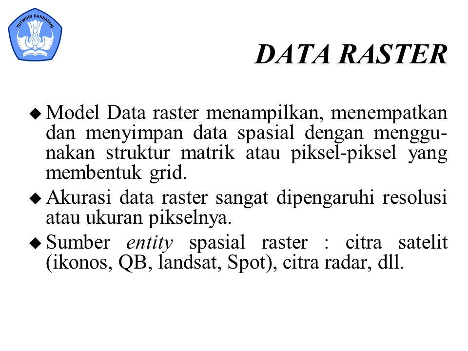 DATA RASTER u Model Data raster menampilkan, menempatkan dan menyimpan data spasial dengan menggu- nakan struktur matrik atau piksel-piksel yang membe