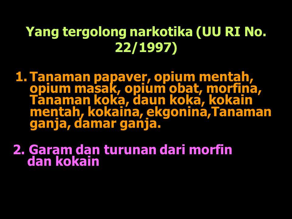 Yang tergolong narkotika (UU RI No. 22/1997) 1.Tanaman papaver, opium mentah, opium masak, opium obat, morfina, Tanaman koka, daun koka, kokain mentah