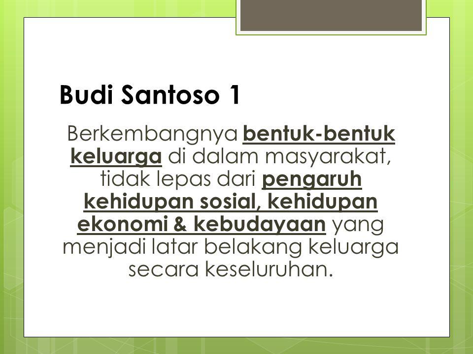 Budi Santoso 2 Bentuk-bentuk keluarga dapat dipergunakan sebagai cermin untuk memahami kehidupan sosial & budaya masyarakat tersebut.
