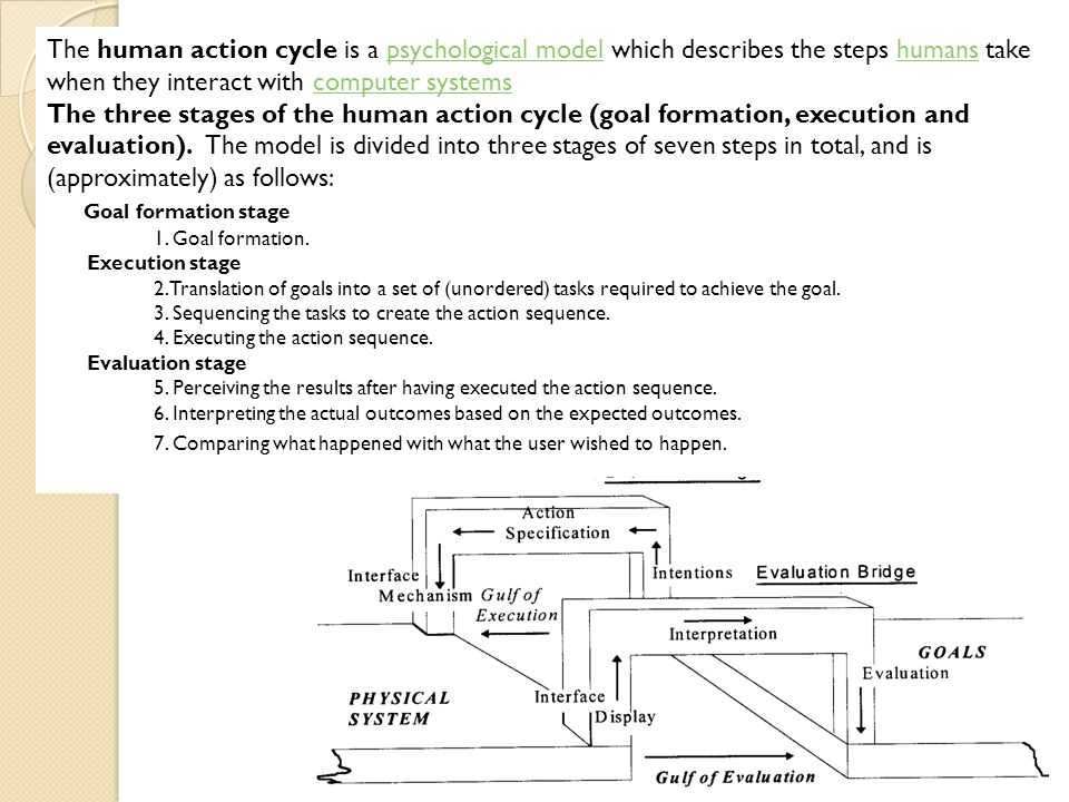 The human action cycle is a psychological model which describes the steps humans take when they interact with computer systemspsychological modelhuman