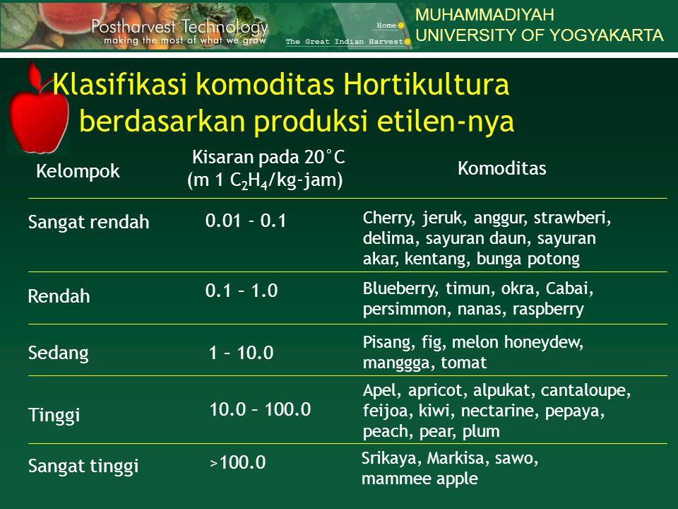 MUHAMMADIYAH UNIVERSITY OF YOGYAKARTA Kelompok Kisaran pada 20°C (m 1 C 2 H 4 /kg-jam) Komoditas Sangat rendah Rendah Sedang Tinggi Sangat tinggi 0.01