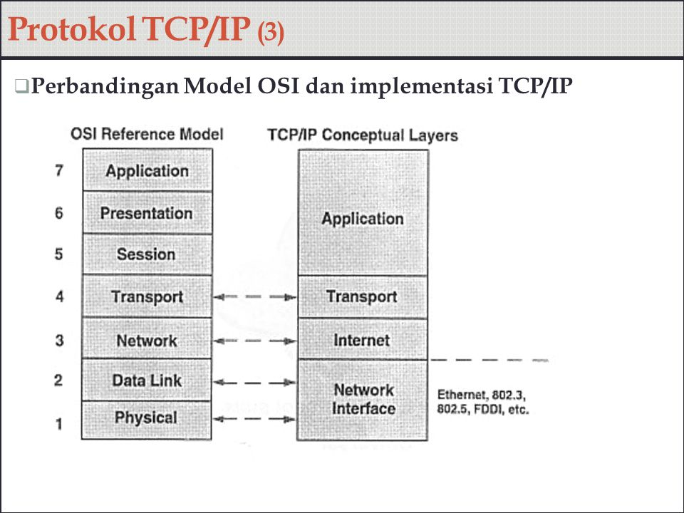  Perbandingan Model OSI dan implementasi TCP/IP Protokol TCP/IP (3)