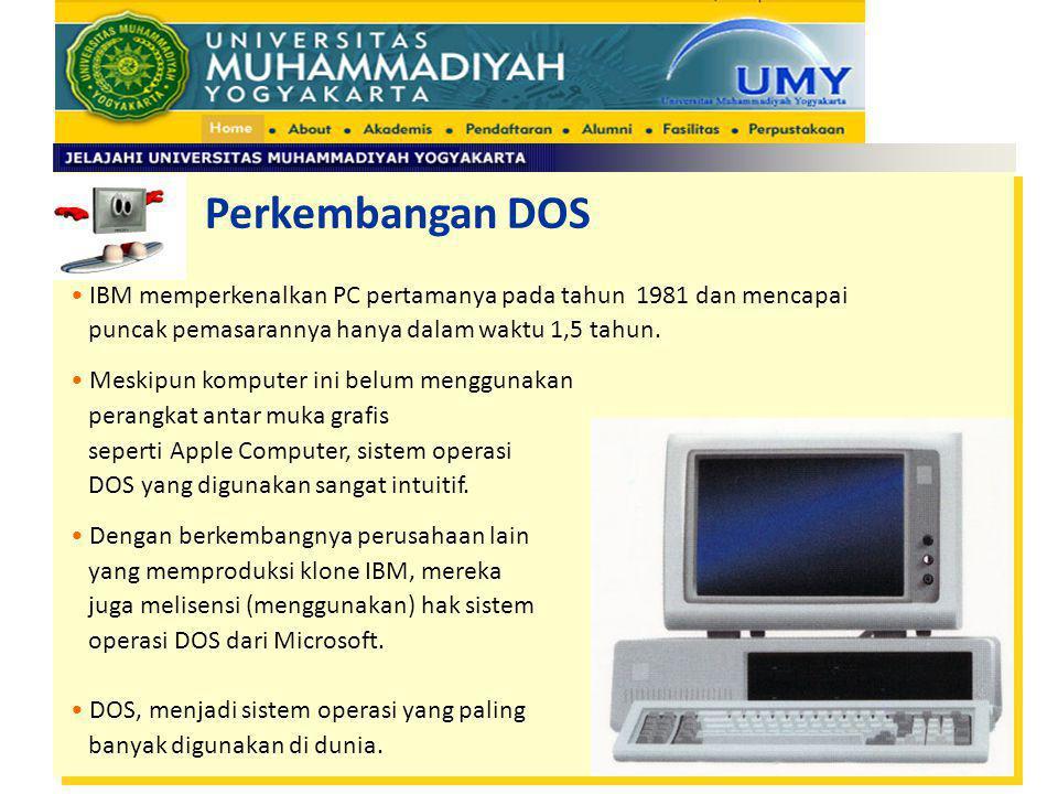 IBM memperkenalkan PC pertamanya pada tahun 1981 dan mencapai puncak pemasarannya hanya dalam waktu 1,5 tahun. Meskipun komputer ini belum menggunakan