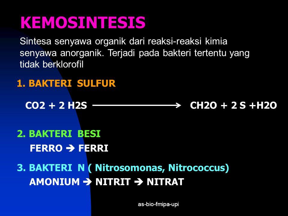 as-bio-fmipa-upi = REAKSI TERANG = REAKSI GELAP