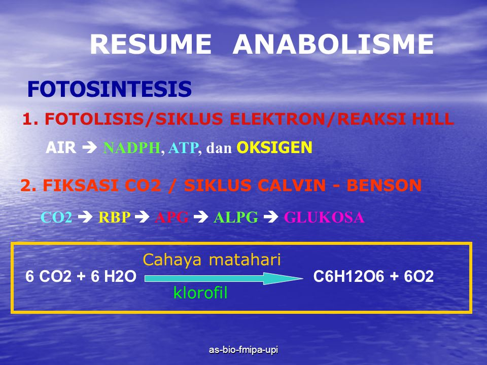 as-bio-fmipa-upi RESUME ANABOLISME FOTOSINTESIS 1.