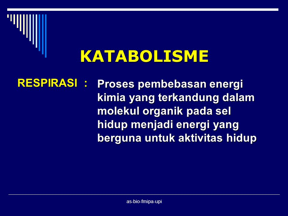 as-bio-fmipa-upi RESUME ANABOLISME FOTOSINTESIS 1.