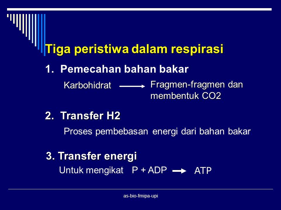 as-bio-fmipa-upi KATABOLISME RESPIRASI : Proses pembebasan energi kimia yang terkandung dalam molekul organik pada sel hidup menjadi energi yang berguna untuk aktivitas hidup
