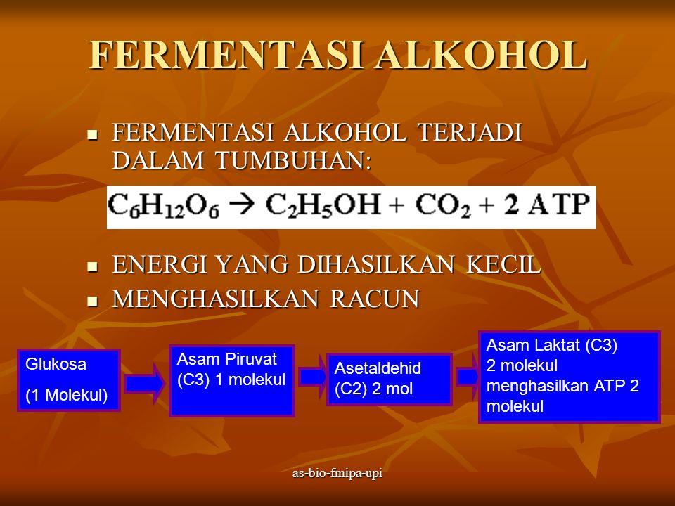 as-bio-fmipa-upi FERMENTASI ASAM LAKTAT  TERJADI DALAM JARINGAN HEWAN  HASIL AKHIR BERUPA SENYAWA ASAM LAKTAT  JUMLAH ENERGI SEDIKIT Glukosa (1 Molekul) Asam Piruvat (C) 1 molekul Asam Laktat (C3) 2 molekul menghasilkan ATP 2 molekul