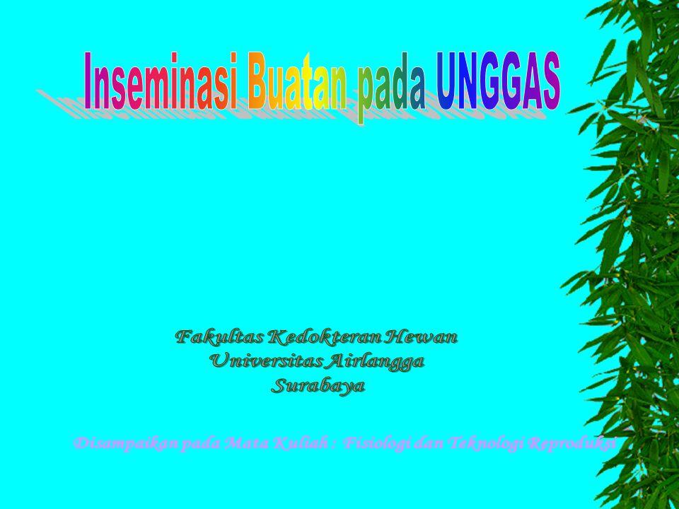 1.Daya thn hdp Spz motil progresif dlm penyimpanan invtro/ invivo Invitro jika Spz motil progresif > 40% Invivo jika pd sarang sperma (UVJ= Utero Vagina Junction & CR= Chalaziferous Region) daya fertil rata2 = 8 hari UVJ & CR dpt menekan proses metab spz, menstabilkan plasmogen & membran sel 2.Metode IB dg deposisi semen intravagina/ intrauterine Intra vagina = 1-2% terimpan dlm UVJ Intra uterine = sebagian bsr dlm UVJ juga ada peluang dlm CR 3.Waktu IB sebelum/ sesudah oviposisi Byknya kematian Spz akibat berlawanan arah dg perjalanan telur 4.Interval IB & Frek IB selama masa produksi