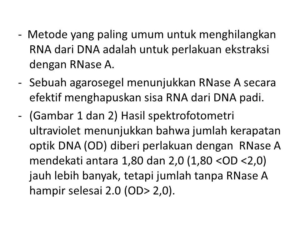 - Metode yang paling umum untuk menghilangkan RNA dari DNA adalah untuk perlakuan ekstraksi dengan RNase A.