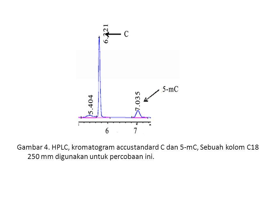 Gambar 4.
