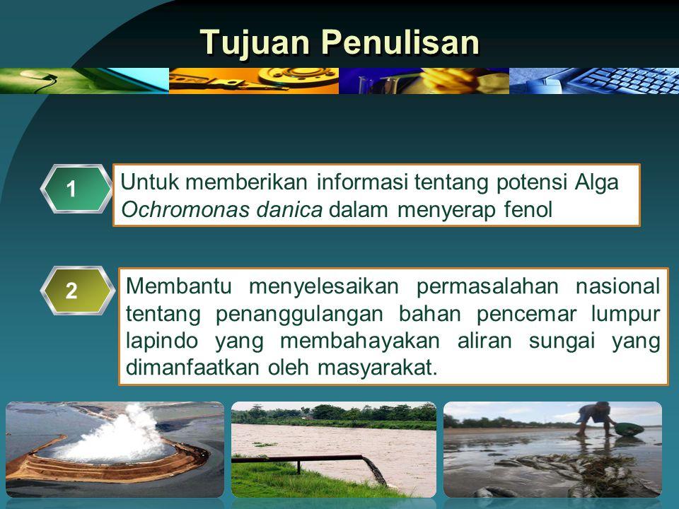 Tujuan Penulisan Untuk memberikan informasi tentang potensi Alga Ochromonas danica dalam menyerap fenol 1 Membantu menyelesaikan permasalahan nasional tentang penanggulangan bahan pencemar lumpur lapindo yang membahayakan aliran sungai yang dimanfaatkan oleh masyarakat.