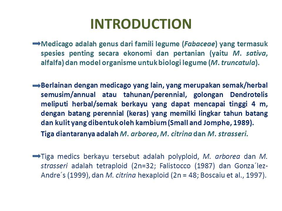 INTRODUCTION Medicago adalah genus dari famili legume (Fabaceae) yang termasuk spesies penting secara ekonomi dan pertanian (yaitu M. sativa, alfalfa)