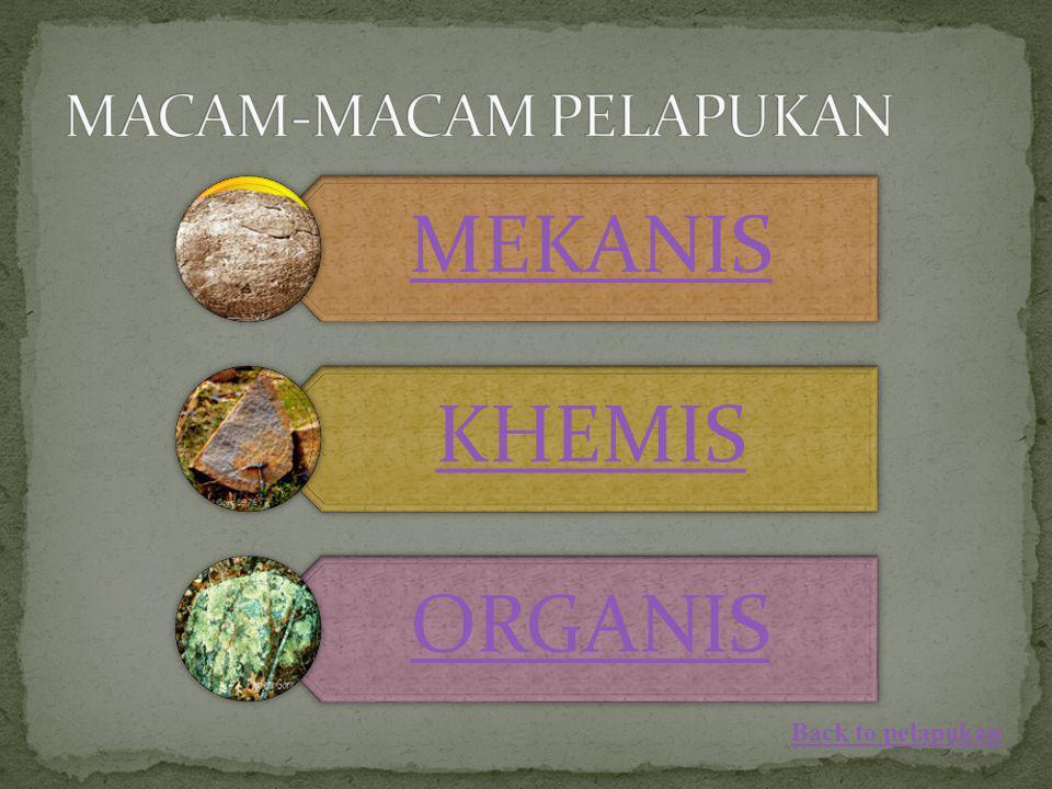 MEKANIS KHEMIS ORGANIS Back to pelapukan