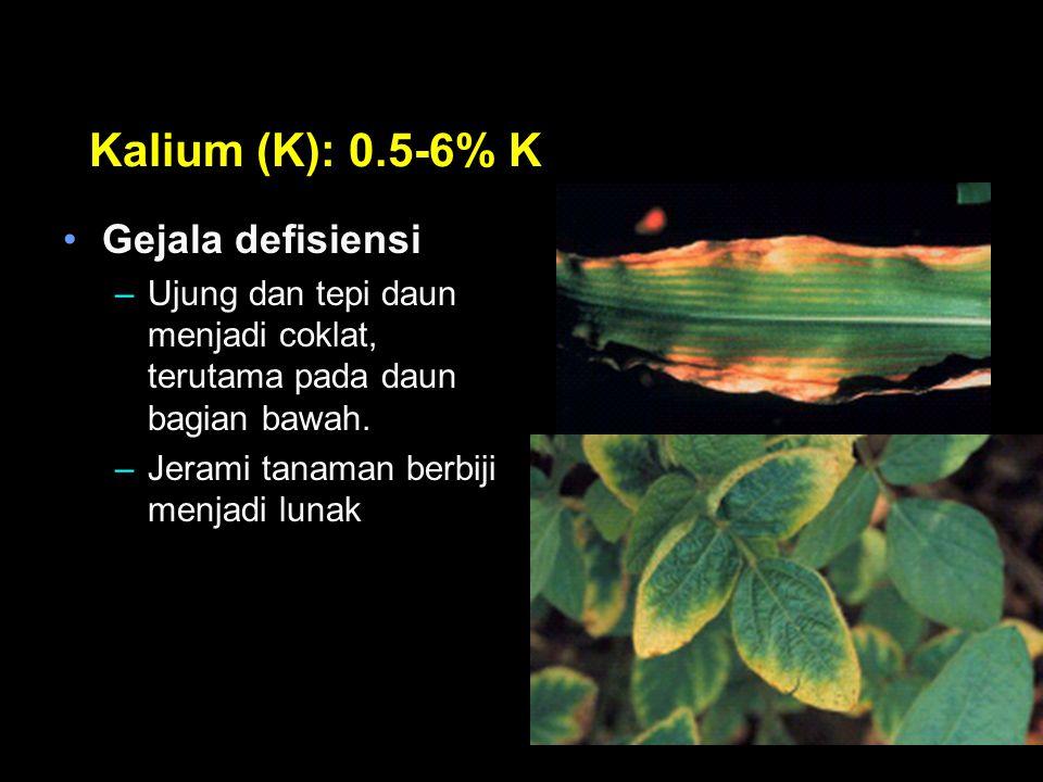 Kalium (K): 0.5-6% K Gejala defisiensi –Ujung dan tepi daun menjadi coklat, terutama pada daun bagian bawah. –Jerami tanaman berbiji menjadi lunak