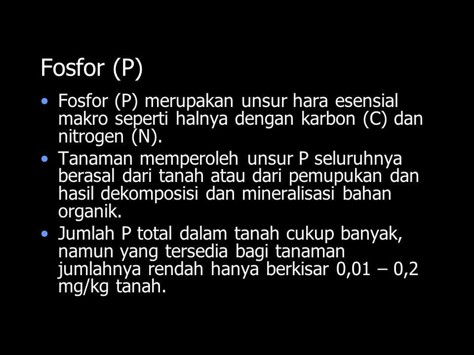 Fosfor (P) Fosfor (P) merupakan unsur hara esensial makro seperti halnya dengan karbon (C) dan nitrogen (N). Tanaman memperoleh unsur P seluruhnya ber