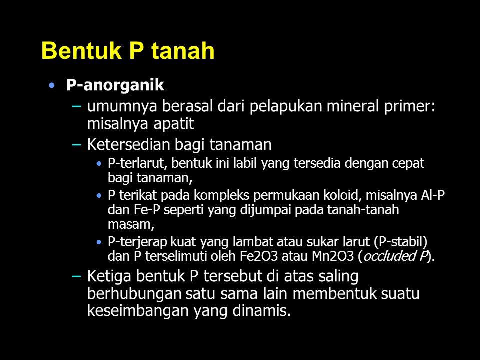 Bentuk P tanah P-anorganik –umumnya berasal dari pelapukan mineral primer: misalnya apatit –Ketersedian bagi tanaman P-terlarut, bentuk ini labil yang