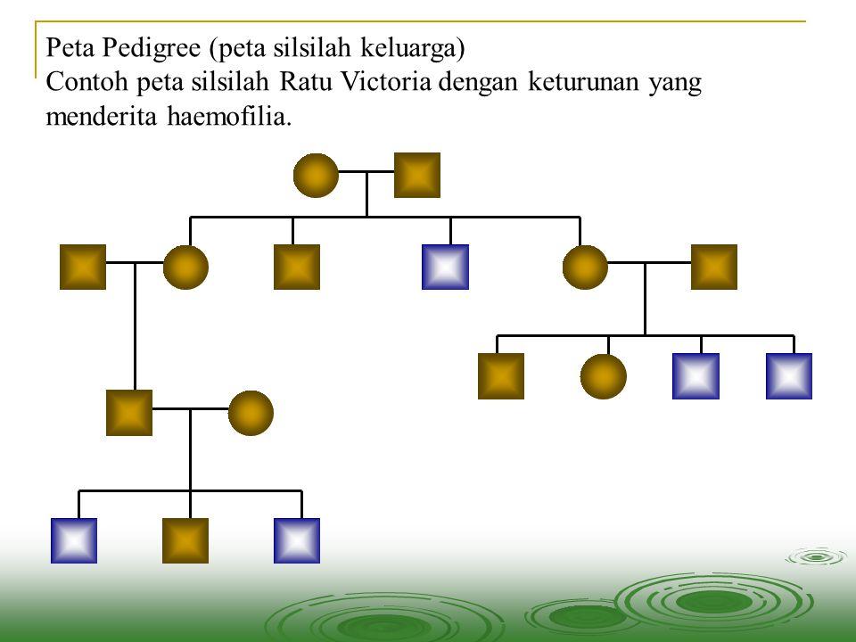 Peta Pedigree (peta silsilah keluarga) Contoh peta silsilah Ratu Victoria dengan keturunan yang menderita haemofilia.
