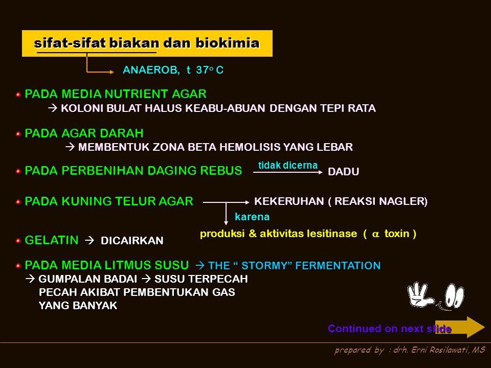 prepared by : drh. Erni Rosilawati, MS sifat-sifat biakan dan biokimia ANAEROB, t 37 o C PADA MEDIA NUTRIENT AGAR PADA MEDIA NUTRIENT AGAR PADA AGAR D