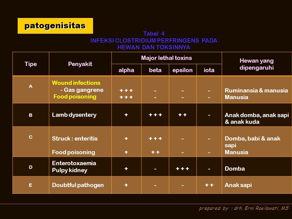 prepared by : drh. Erni Rosilawati, MS patogenisitas Tabel 4 INFEKSI CLOSTRIDIUM PERFRINGENS PADA HEWAN DAN TOKSINNYA TipePenyakit Major lethal toxins