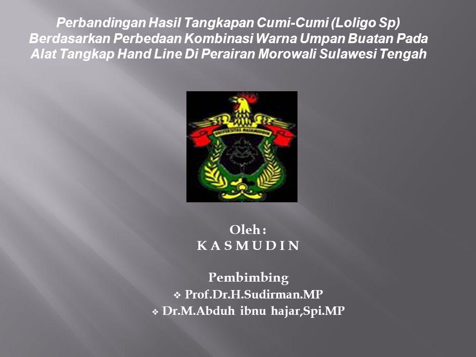 Oleh : K A S M U D I N Pembimbing  Prof.Dr.H.Sudirman.MP  Dr.M.Abduh ibnu hajar,Spi.MP Perbandingan Hasil Tangkapan Cumi-Cumi (Loligo Sp) Berdasarka