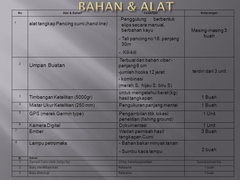 B. Alat dan Bahan NoAlat & BahanDeskripsiKeterangan 1 alat tangkap Pancing cumi (hand line) - Penggulung berbentuk elips secara manual, berbahan kayu