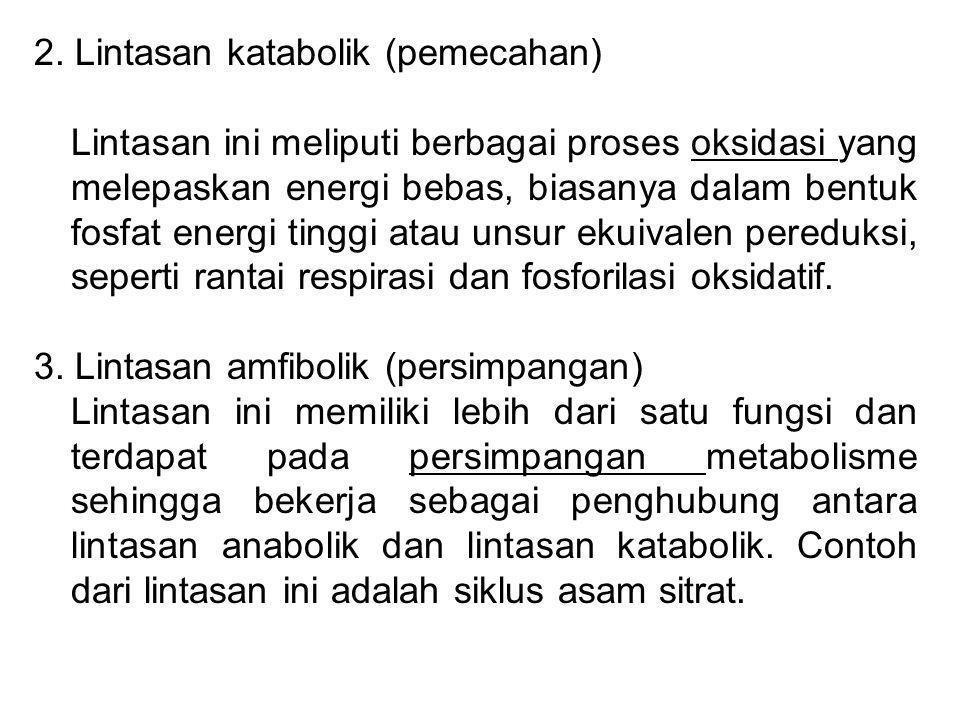 2. Lintasan katabolik (pemecahan) Lintasan ini meliputi berbagai proses oksidasi yang melepaskan energi bebas, biasanya dalam bentuk fosfat energi tin