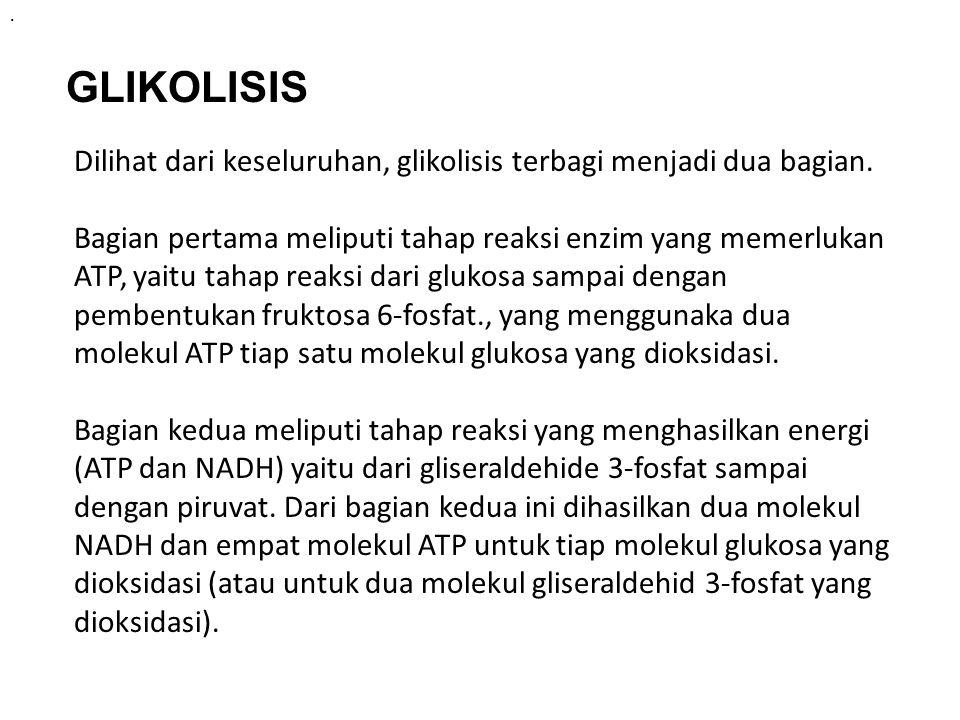 . GLIKOLISIS Dilihat dari keseluruhan, glikolisis terbagi menjadi dua bagian. Bagian pertama meliputi tahap reaksi enzim yang memerlukan ATP, yaitu ta