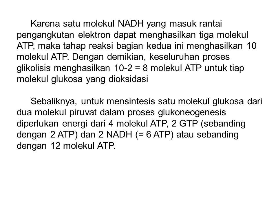 Karena satu molekul NADH yang masuk rantai pengangkutan elektron dapat menghasilkan tiga molekul ATP, maka tahap reaksi bagian kedua ini menghasilkan 10 molekul ATP.
