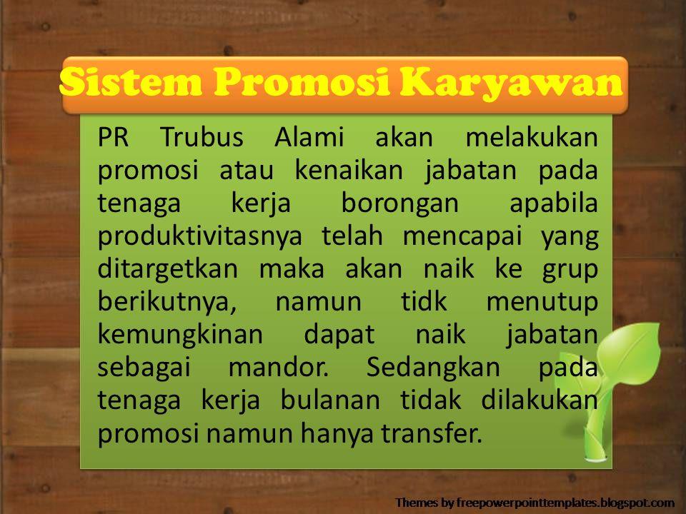 Sistem Promosi Karyawan PR Trubus Alami akan melakukan promosi atau kenaikan jabatan pada tenaga kerja borongan apabila produktivitasnya telah mencapa