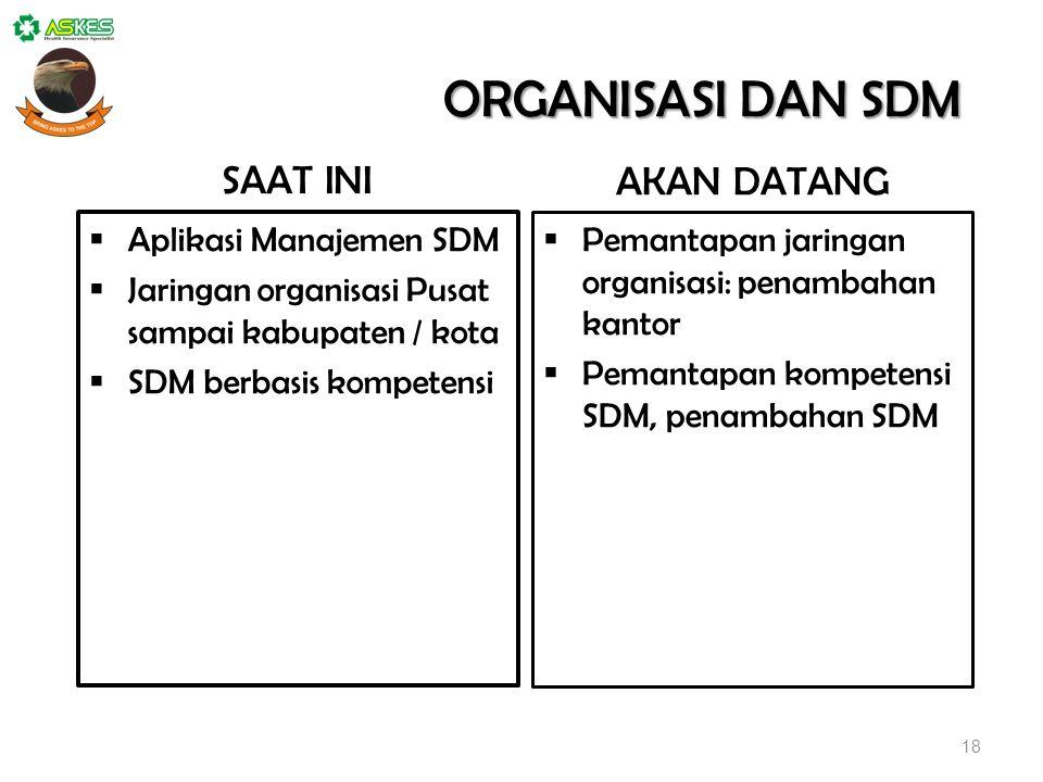 18 ORGANISASI DAN SDM  Aplikasi Manajemen SDM  Jaringan organisasi Pusat sampai kabupaten / kota  SDM berbasis kompetensi  Pemantapan jaringan org