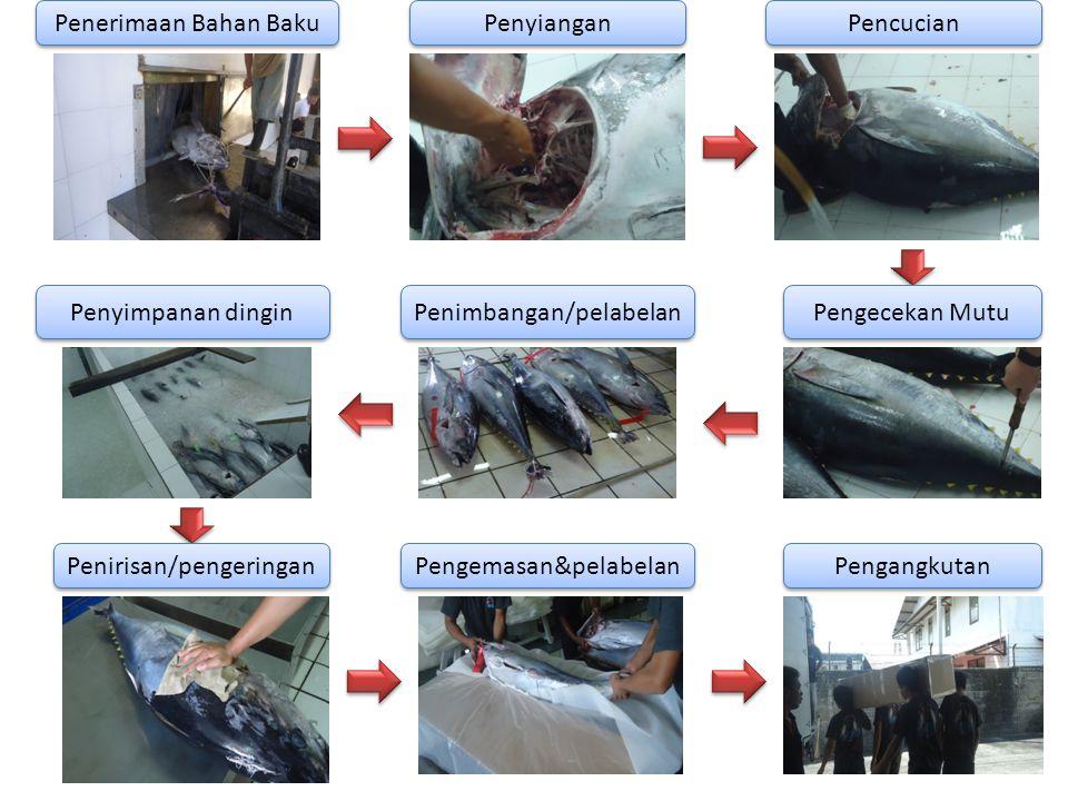 Penerimaan Bahan Baku Penyiangan Pencucian Pengecekan Mutu Penimbangan/pelabelan Penyimpanan dingin Penirisan/pengeringan Pengemasan&pelabelan Pengang