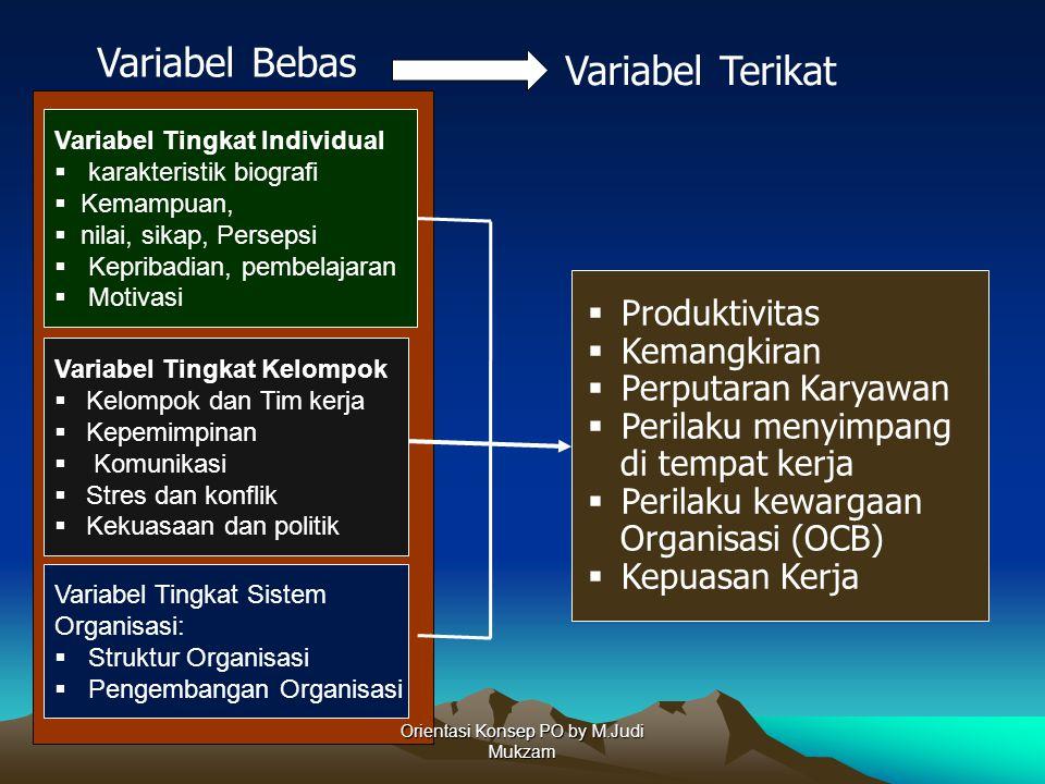 Variabel Tingkat Individual  karakteristik biografi  Kemampuan,  nilai, sikap, Persepsi  Kepribadian, pembelajaran  Motivasi Variabel Tingkat Kel