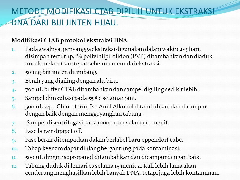 METODE MODIFIKASI CTAB DIPILIH UNTUK EKSTRAKSI DNA DARI BIJI JINTEN HIJAU. Modifikasi CTAB protokol ekstraksi DNA 1. Pada awalnya, penyangga ekstraksi