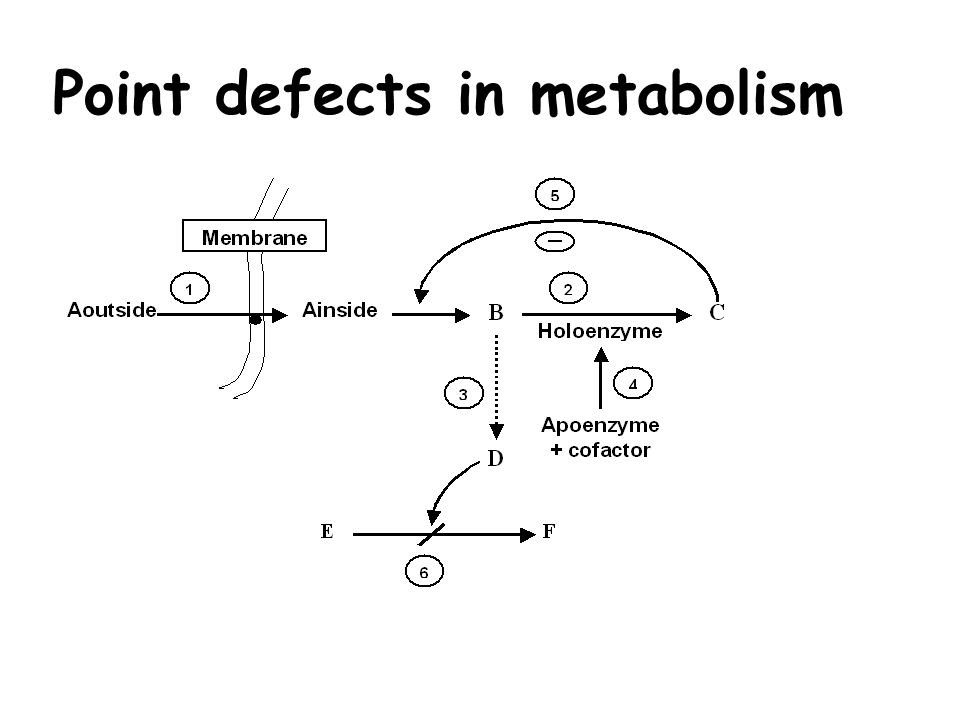 Point defects in metabolism