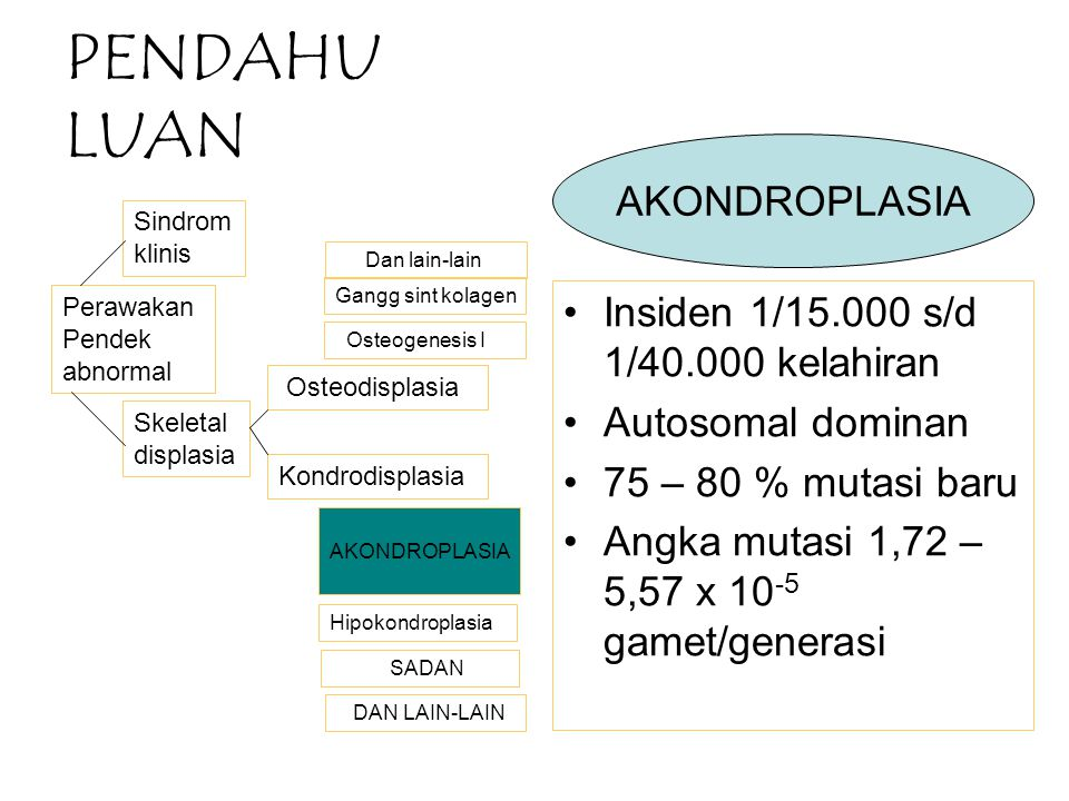 PENDAHU LUAN Insiden 1/15.000 s/d 1/40.000 kelahiran Autosomal dominan 75 – 80 % mutasi baru Angka mutasi 1,72 – 5,57 x 10 -5 gamet/generasi Perawakan